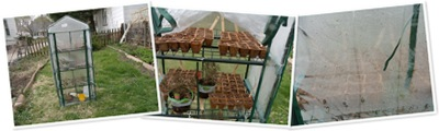 View greenhouse 2011 April