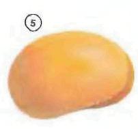 mango <!  :en  >Fruits<!  :  > things english through pictures english through pictures