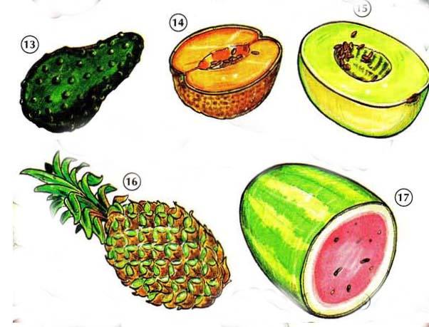 FRUITS 3 <!  :en  >Fruits<!  :  > things english through pictures english through pictures