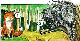 1. fox  2. porcupine a. quill