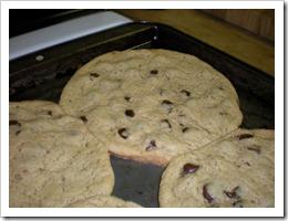 Me love cookie!!