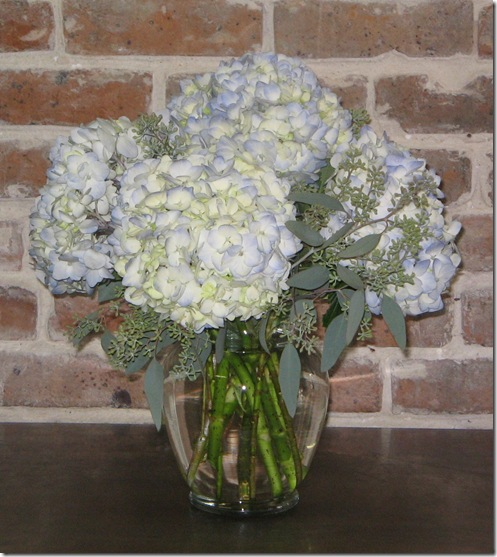 50 all blue hydrangea ginger jar