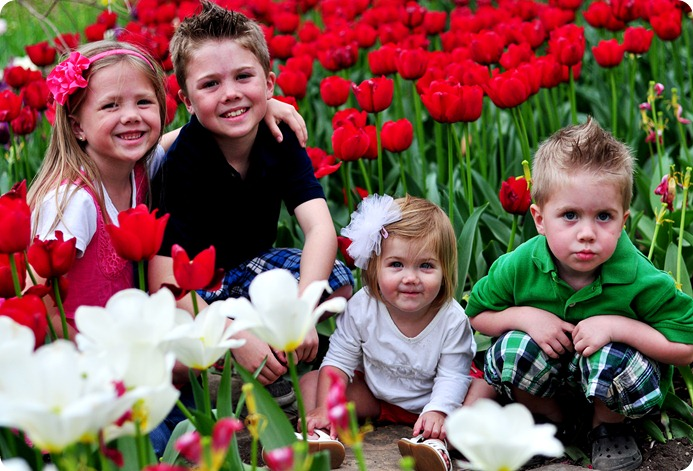 Tulips and kids