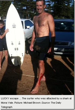 Copy of 11 2 2010 Man attacked by shark at Mona Vale