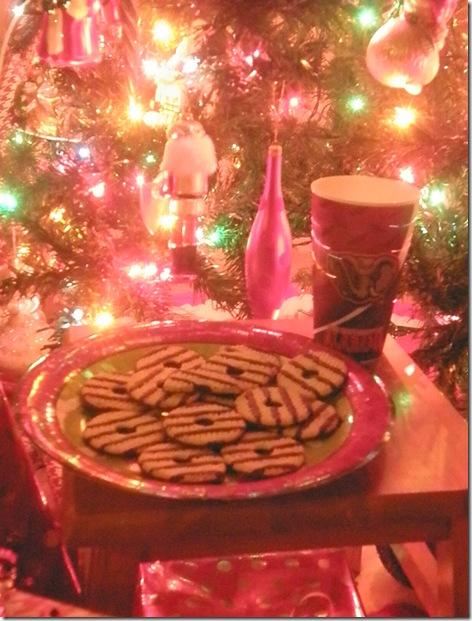 Christmas Fun 117