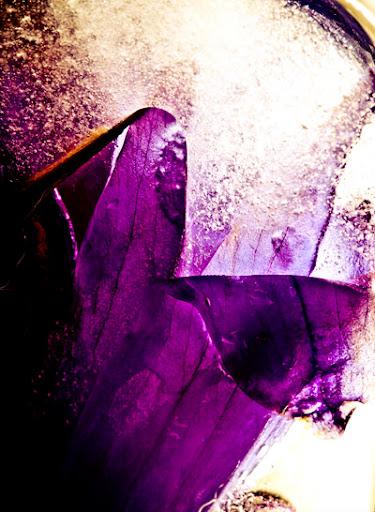 冰凍花朵和超微距露水