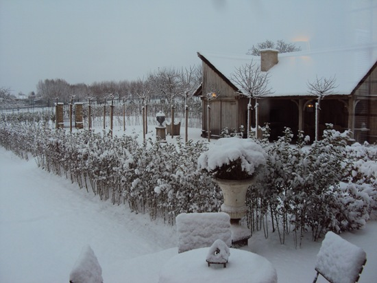 Foto 20 december 2010 035