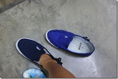 blue Kungfu shoes