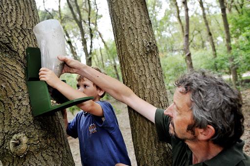 Nieuwe bewoners nemen intrek in Efteling Bosrijk