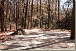 Barnwell campsite 03