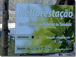 Cinfães vale Bestança local da Reflorestação fev2011 fotos de Napoleão Monteiro