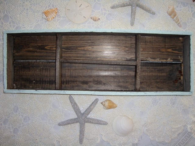 shelf 050