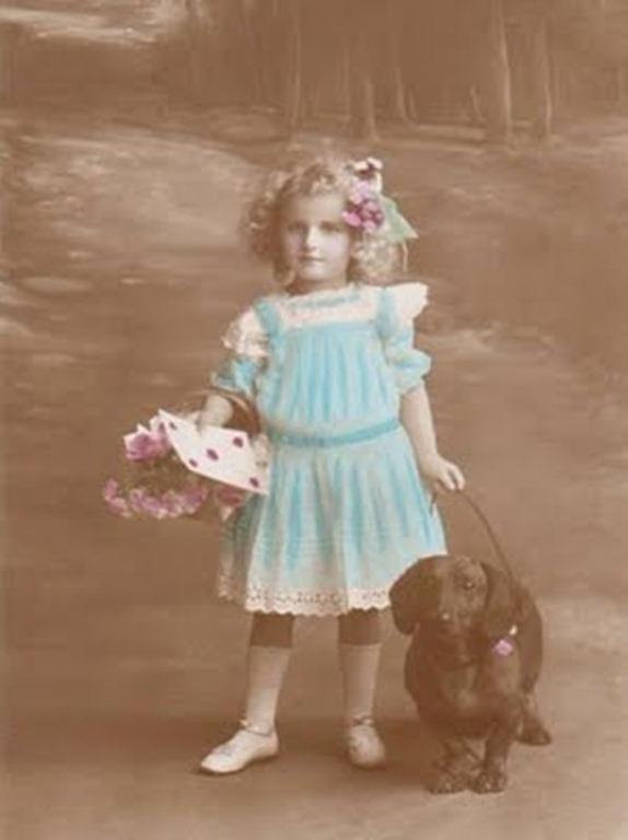 1910blonde_dog