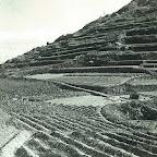 八木の山風景1964、昭和39年-高坪山01.jpg