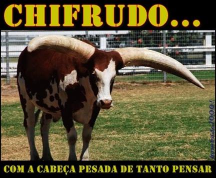 chifrudo - corno