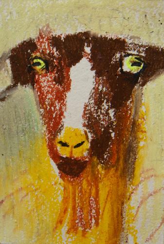Goat Nr12
