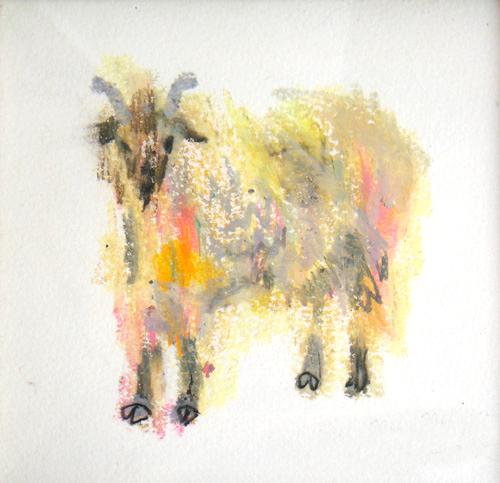 Goat Nr15