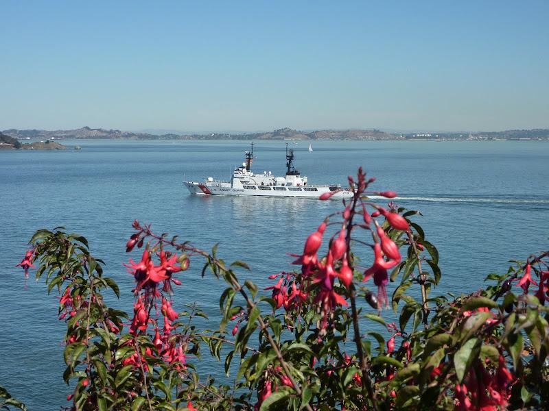 Garden at Alcatraz