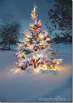 kerstboom in sneeuw