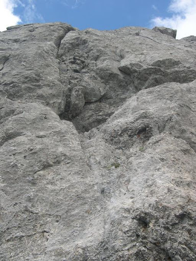 Orcada Sur