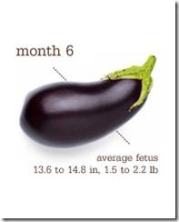 week 27 eggplant