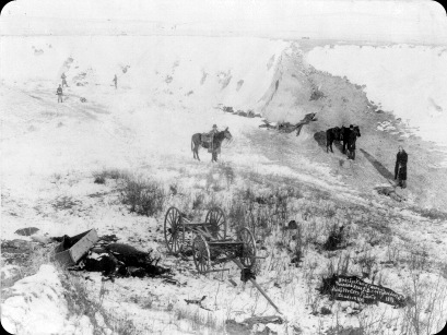 Wounded_Knee_dead_and_horses
