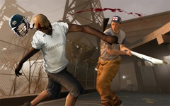 left4dead2_cricketbat