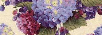 lh_hydrangea_raspberry_plum_4x4