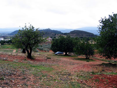 La Ortichola, Turís