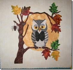 Pats owl