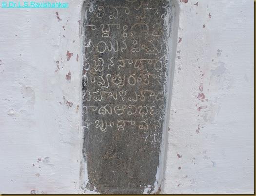 DSCN1818
