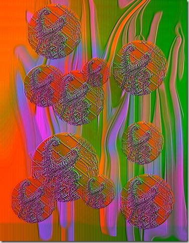 sundew circles