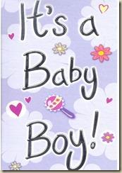 its a boy g3040_423x600