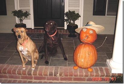 Halloween Puppies 2006 001