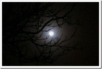 Blue Moon. November 20, 2010