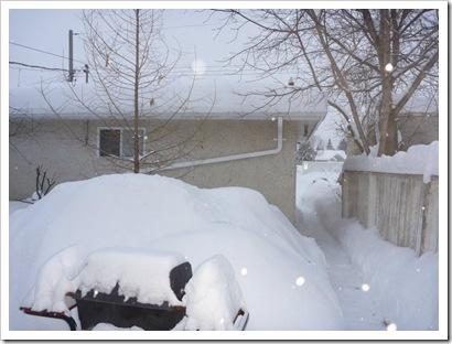 Edmonton, Alberta (2011)
