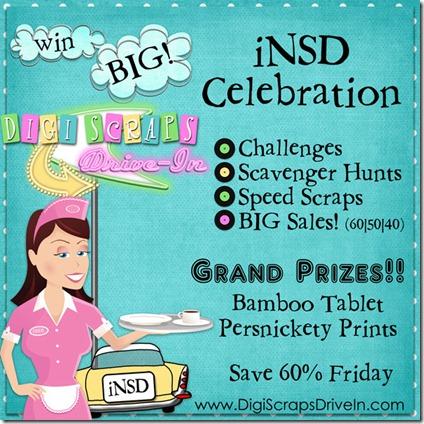 iNSD2011