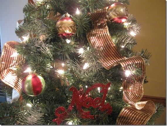 Christmas 12-8-09 026