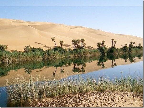 20 most incredible desert oasis1