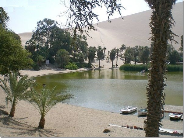 20 most incredible desert oasis9