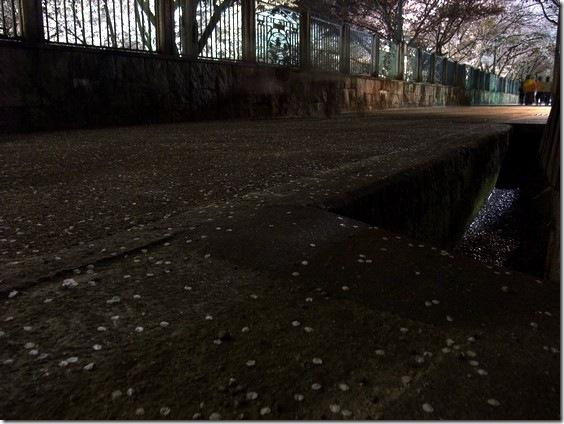 @琵琶湖疏水3
