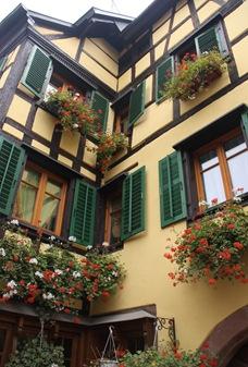 Alsace Oct 09 (225)