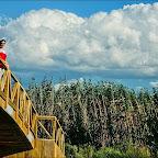Olcay yeni yapılmış köprünün üzerinde
