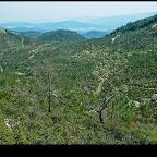 Bir zamanlar ormanlık olan bu alan şimdi yangın sonrasında açıklık