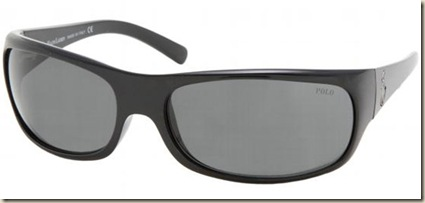 polo-4033-sunglasses-500187