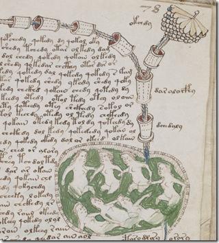 voynich-manuscrito