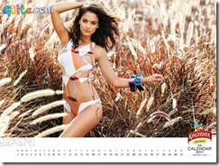 Kingfisher Calendar 2011_1