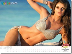 Kingfisher Calendar 2011_6