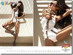 Kingfisher Calendar 2011_12