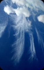 cloudangels